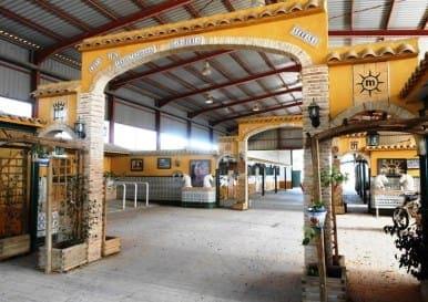 Stables In San Miguel Salinas