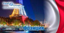 Как получить гражданство Франции? - Feod Group