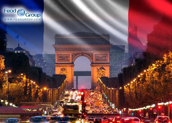 Стартап виза во Францию  (French Tech Visa)