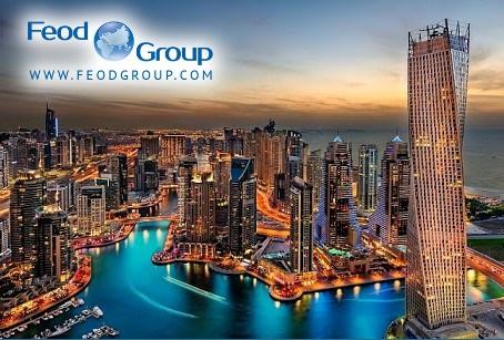 Реєстрація компанії в ОАЕ: переваги і вартість