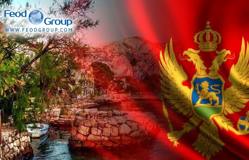Программа Гражданство Черногории за инвестиции закроется с 2022 года